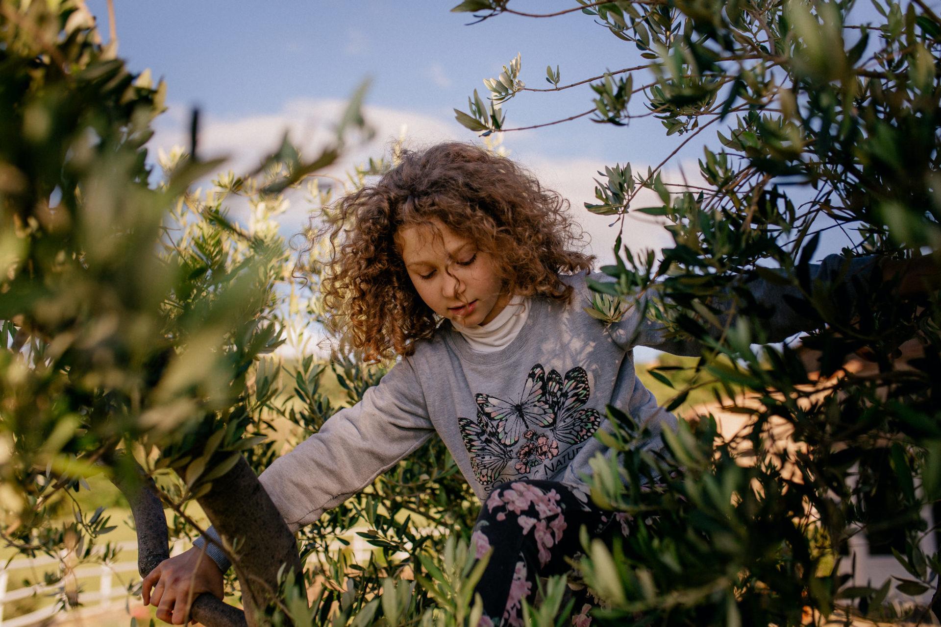 Familienbilder Urlaub-Family Fusion Italien-lebhafte Familie-italienischer Spirit-Dimora Santa Margherita-Ungestellte Familienbilder-Olivenbaum klettern-wilde locken Mädchen
