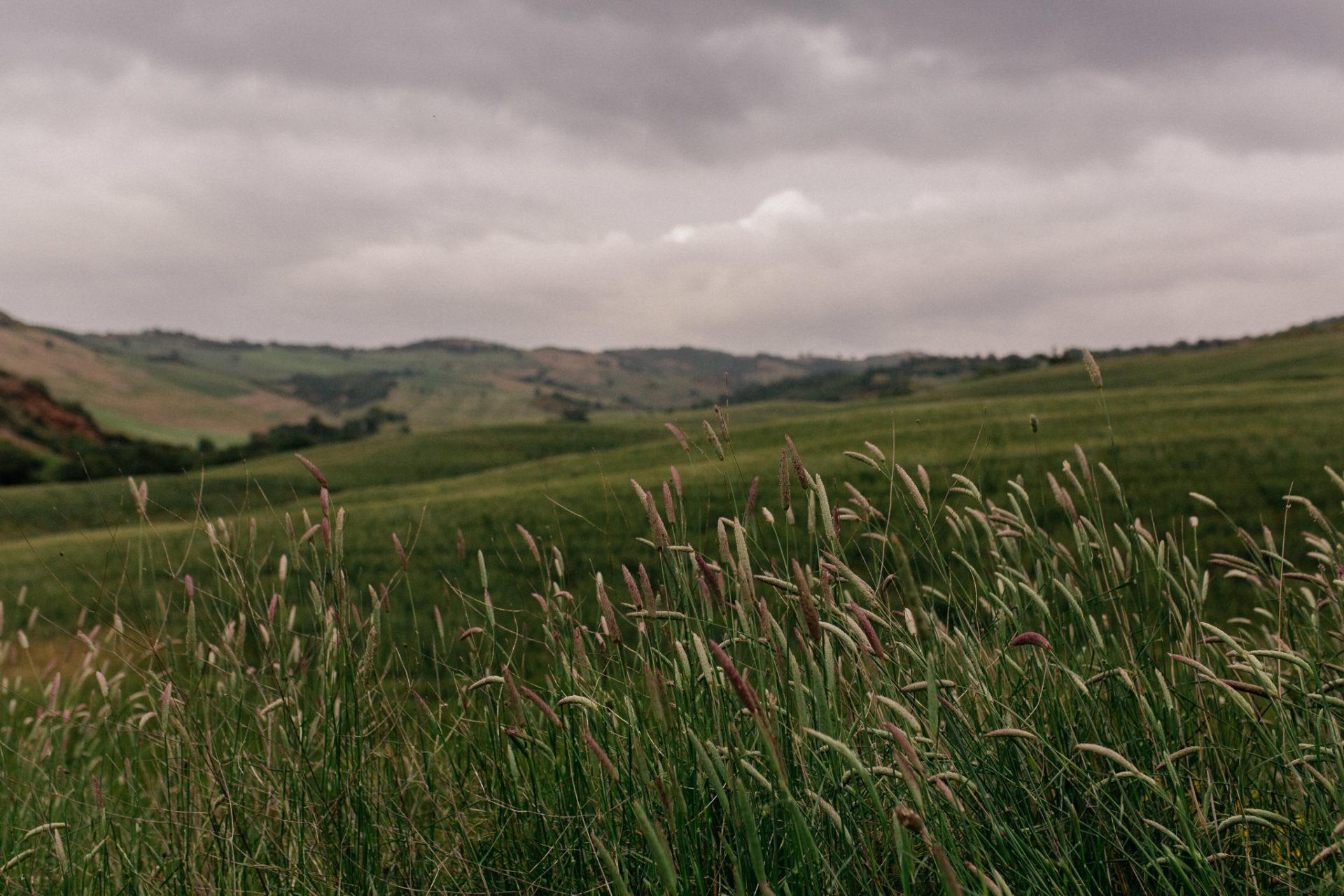 europa roadtrip mit hund-toskana entdecken-abseits der Touristen in Italien-hochzeitsfotograf Toskana