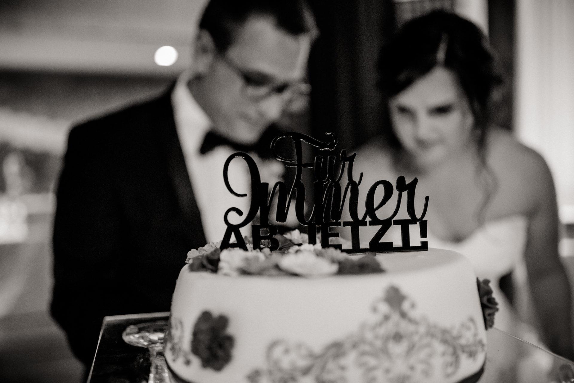 hochzeitsfotograf schloss heinsheim-elegant heiraten-Schafstall Heinsheim-Hochzeit Stuttgart Heilbronn-Hochzeitstorte-für immer ab jetzt