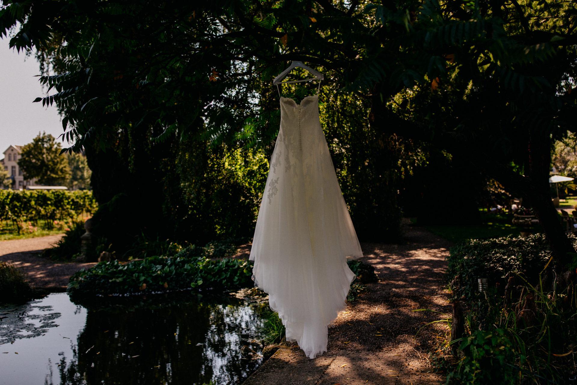 Weingut Fitz Ritter Hochzeitsfotograf-heiraten Pfalz-Sommerhochzeit Kleid