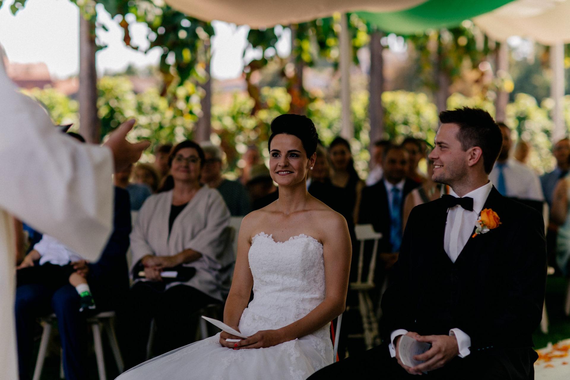 Weingut Fitz Ritter Hochzeitsfotograf-heiraten Pfalz-Sommerhochzeit Freie Trauung Zelt