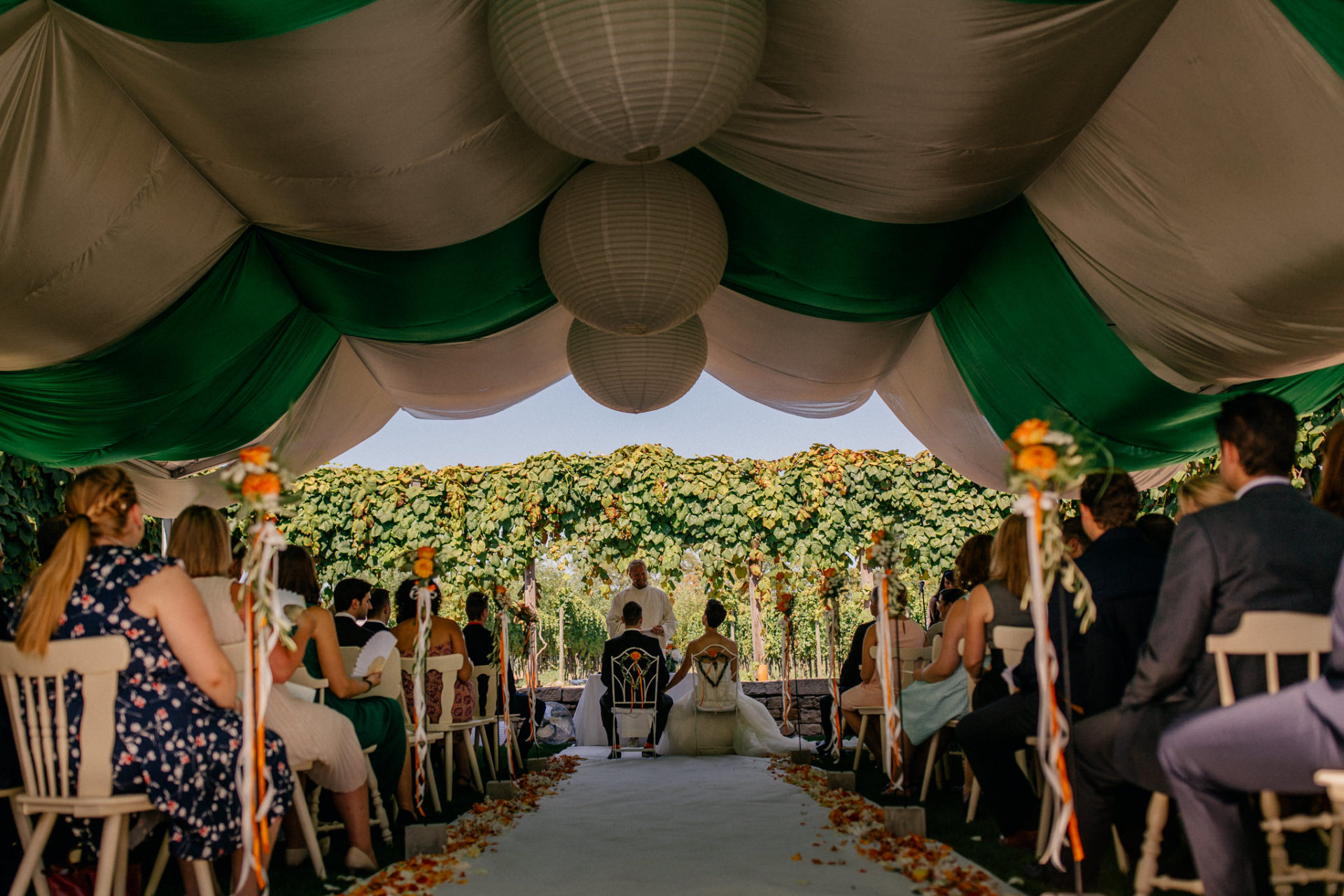 Weingut Fitz Ritter Hochzeitsfotograf-heiraten Pfalz-Sommerhochzeit Trauung im Freien Zelt