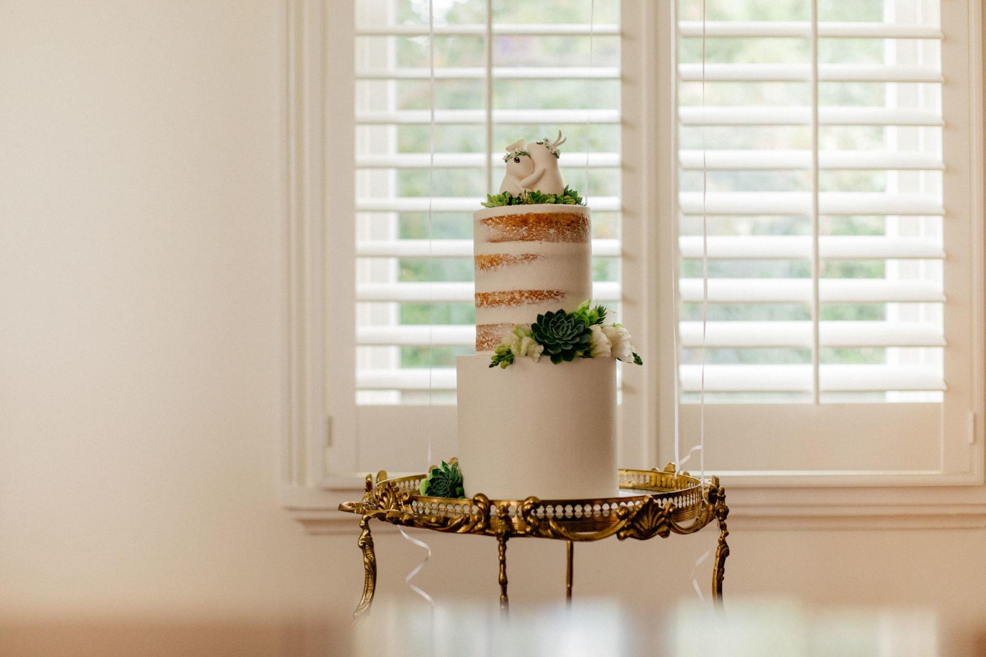Hochzeitsfotograf Australien Melbourne-DIY Gartenhochzeit-Hochzeitstorte naked cake