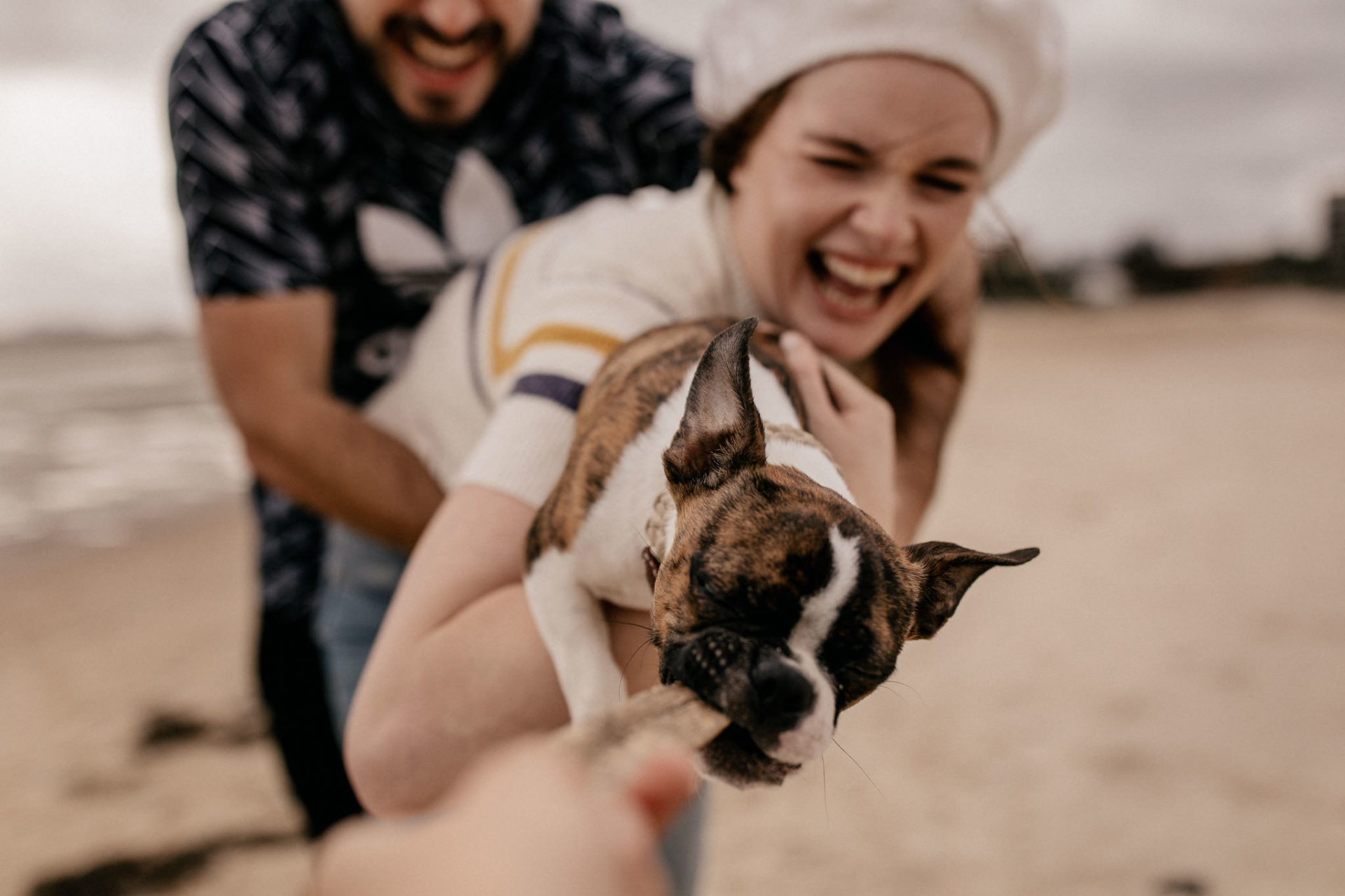 ungestellte dokumentarische kreative hochzeitsbilder-hochzeitsfotograf Australien-St Kilda Beach spaziergang-hunde in australien-boston terrier Welpe