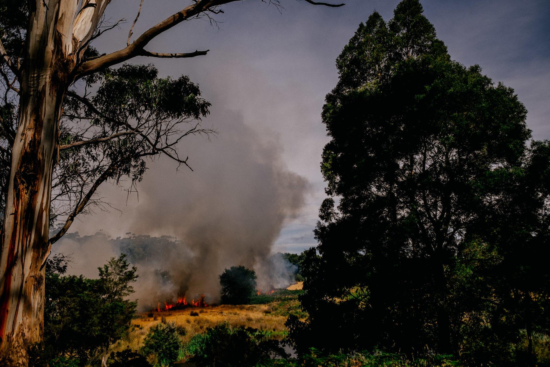 Tasmanien-erleben-roadtrip-rundreise-wunderschöne langschaften-buschfeuer-loescharbeiten