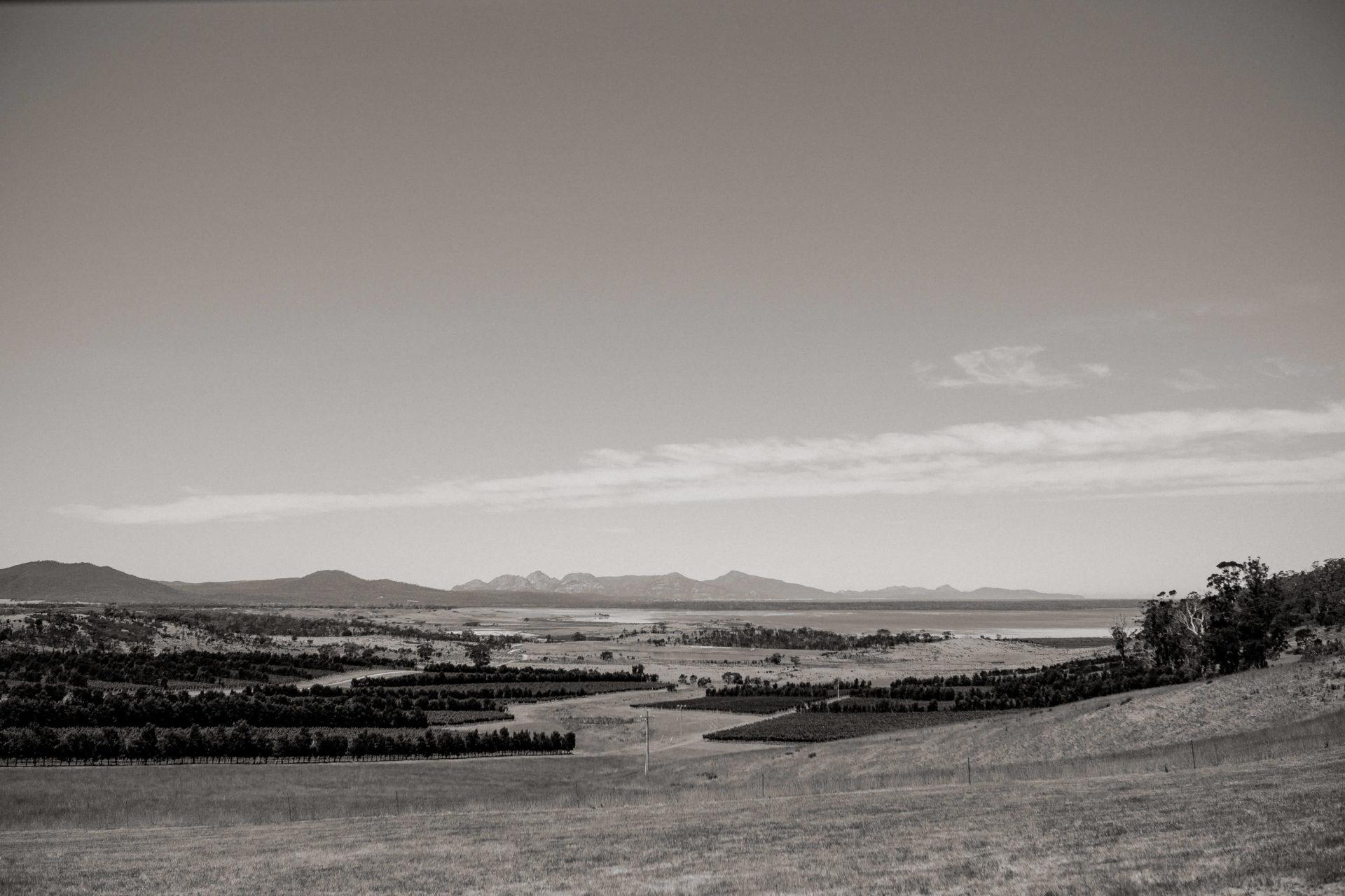 Tasmanien-erleben-roadtrip-rundreise-wunderschöne langschaften-devils corner wein-